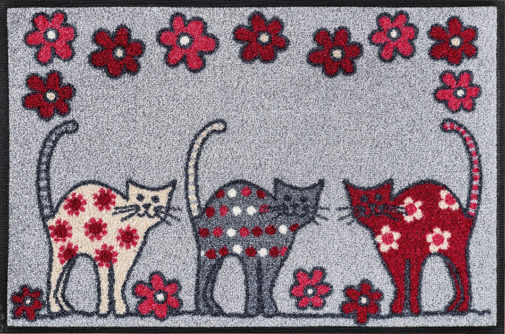 Vaip Cat Parade 50x75cm