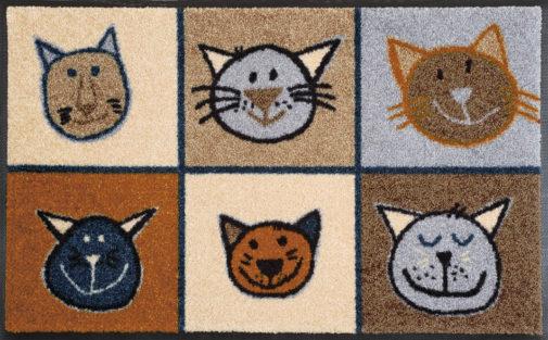 Vaip Miau Miau 50x75