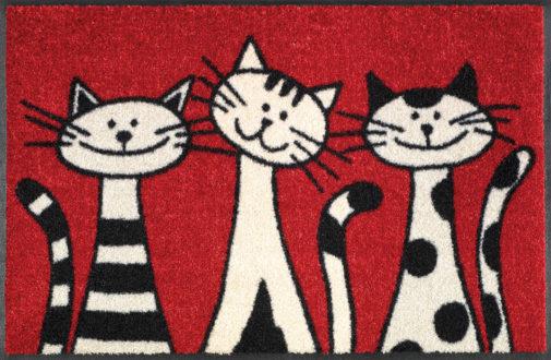 Vaip Three Cats 50x75